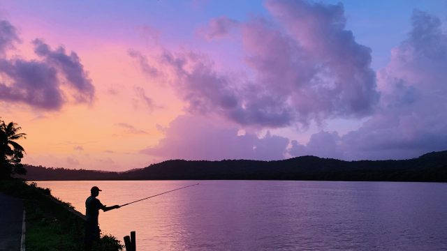 Pictures to make you fall in love with Goa